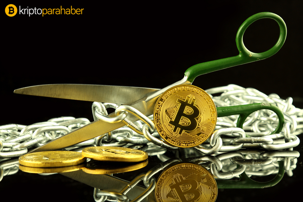 Bitcoin Cash Blockchain'i iki rakip kripto para ortaya çıkardı